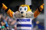 Spark the Tiger - QPR mascot